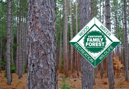 "Upper Peninsula Tree Farm Group ""The Sign of Good Forestry""  Welcome to Grossman Forestry Tree Farm Group of the Upper Peninsula of Michigan.  The American Tree Farm System has established a relatively new program called the American Tree Farm System, Group Certification Process."