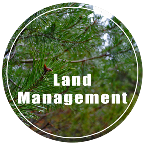 UP Land Management - Land Management in Upper Peninsula